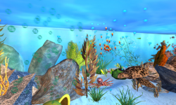 The Virtual Aquarium