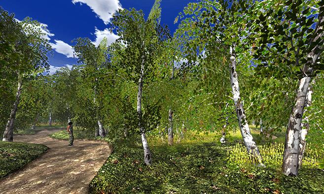 21strom Landscaping