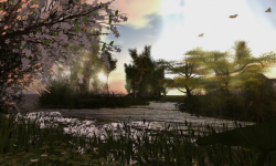 Luv's Garden