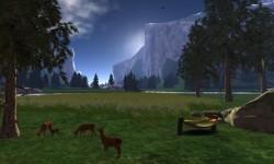 Yosemite Valley (Forever Wild)