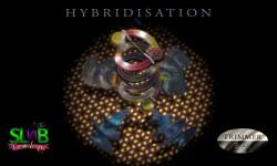 Hybridisation - Trimmer Bay