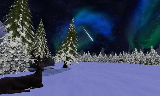 A Winters Night Ride