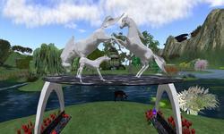AKK Horse Ranch