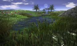 KIDD Grass Garden
