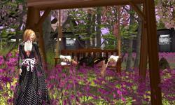 Balanvi Garden