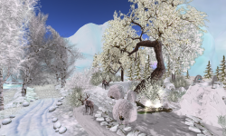 Winter Wonderland at Two Moon Paradise