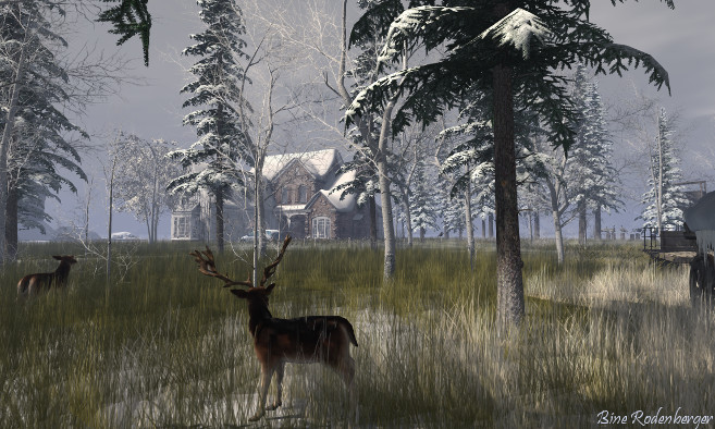 Binemust Winter