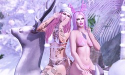 Playdolls Pink Xmas Party