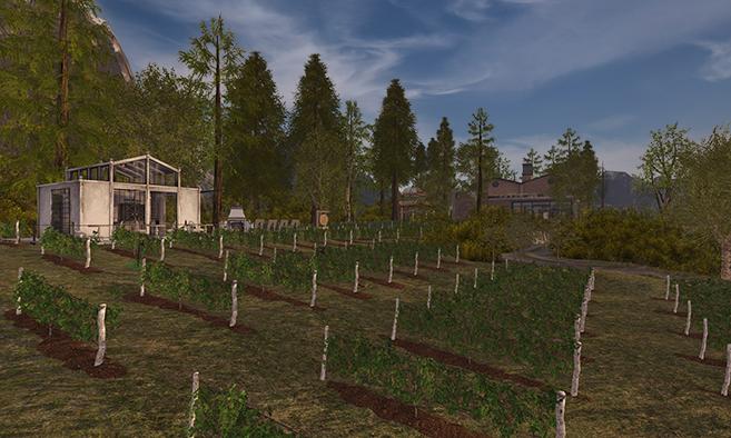 The Vineyards at Vargas