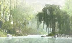 Mindful Cove