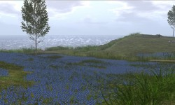 A Touch of Scotland ~ Bluebell Coast