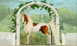 The Horse Show Shopping Event