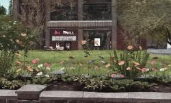 art miLL Gallery @ Butterfly Island