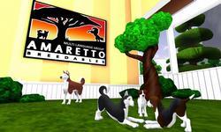 Amaretto K-9 Dogs